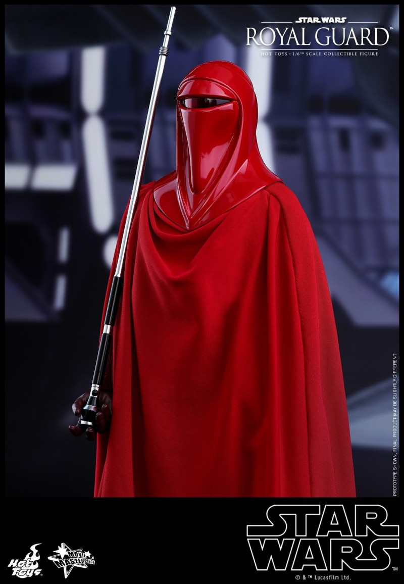 Hot Toys - SW - Royal Guard collectible figure_PR3.jpg