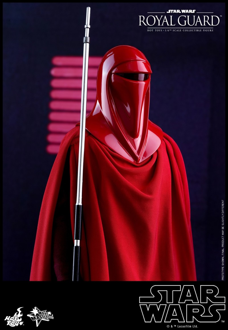 Hot Toys - SW - Royal Guard collectible figure_PR5.jpg