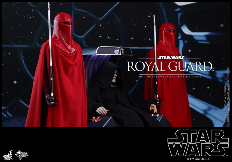 Hot Toys - SW - Royal Guard collectible figure_PR6.jpg