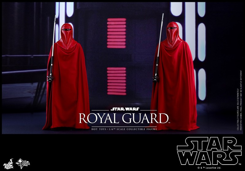 Hot Toys - SW - Royal Guard collectible figure_PR7.jpg