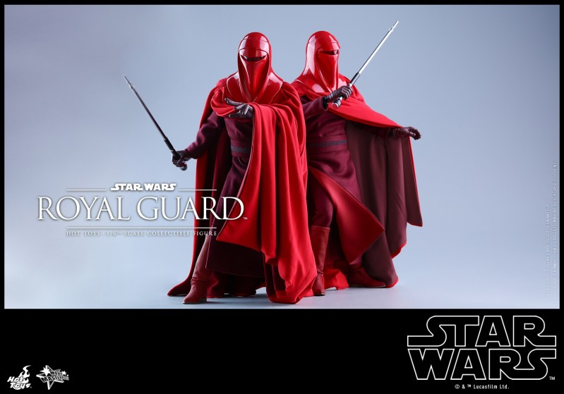 Hot Toys - SW - Royal Guard collectible figure_PR9.jpg