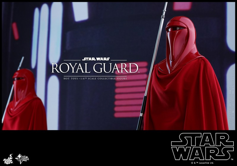 Hot Toys - SW - Royal Guard collectible figure_PR8.jpg