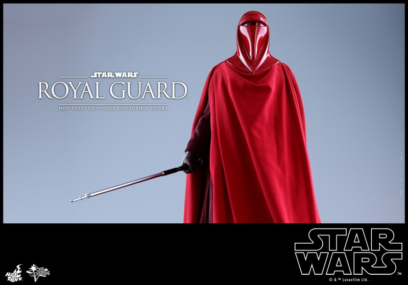 Hot Toys - SW - Royal Guard collectible figure_PR10.jpg