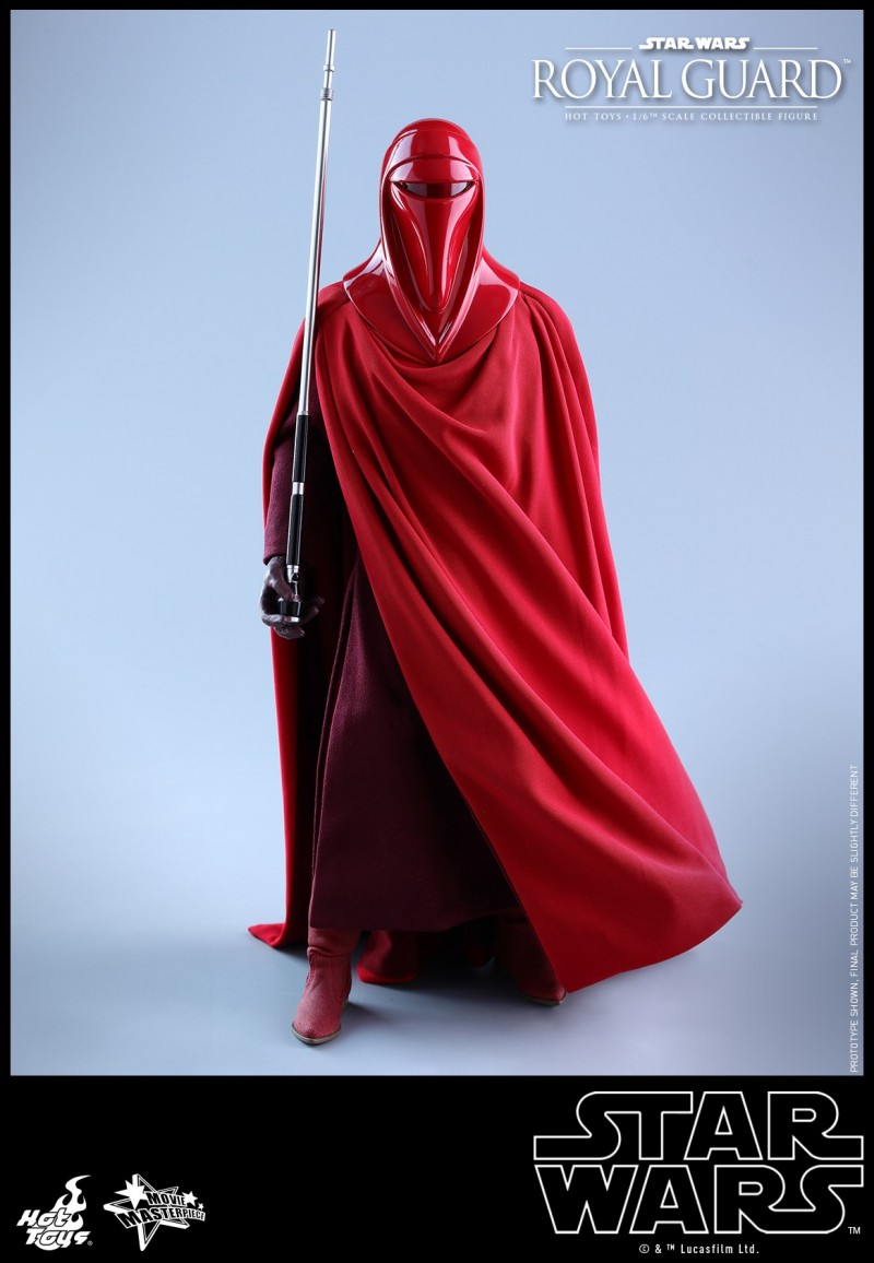 Hot Toys - SW - Royal Guard collectible figure_PR13.jpg