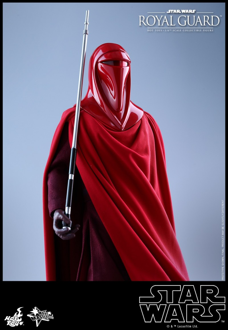Hot Toys - SW - Royal Guard collectible figure_PR17.jpg