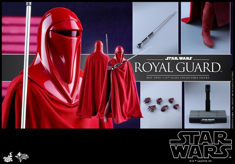Hot Toys - SW - Royal Guard collectible figure_PR19.jpg
