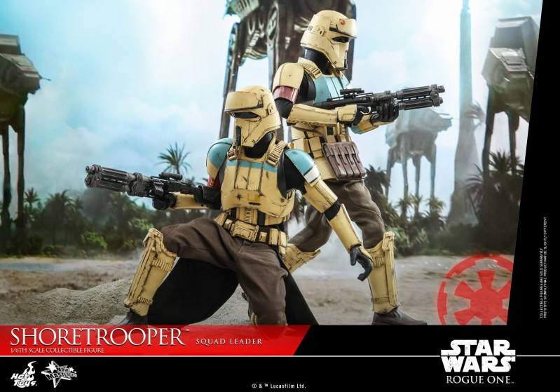 Hot Toys - SWRO - Shoretrooper Squad Leader collectible figure_PR9.jpg