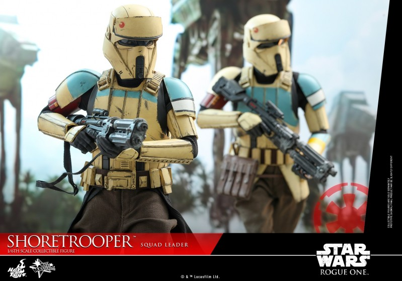 Hot Toys - SWRO - Shoretrooper Squad Leader collectible figure_PR10.jpg