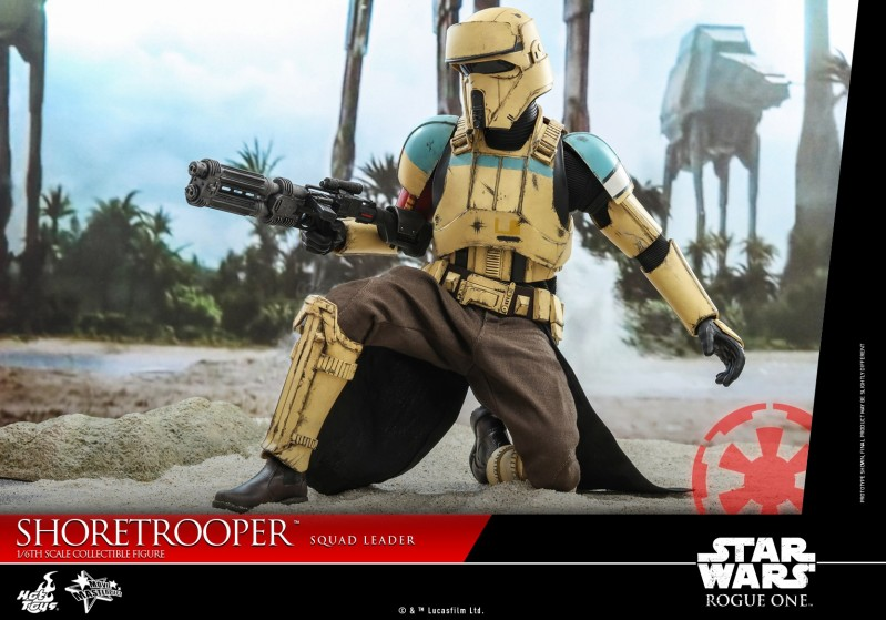 Hot Toys - SWRO - Shoretrooper Squad Leader collectible figure_PR12.jpg